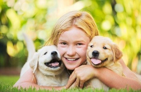 питание собак крупных пород